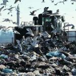 Una discarica dei rifiuti